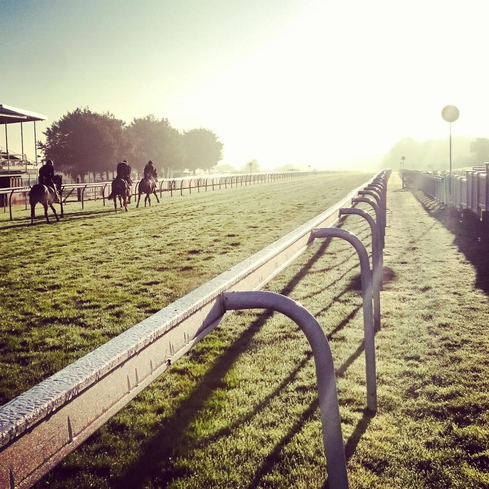morning racecource gallop